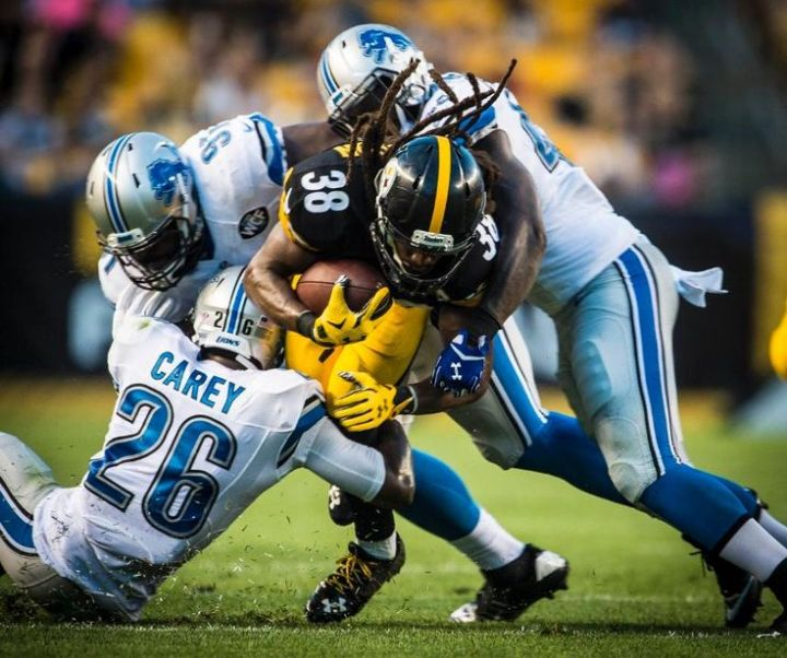 8f0a57587bfd52aaec305e0668ca640d--lions-photo-galleries